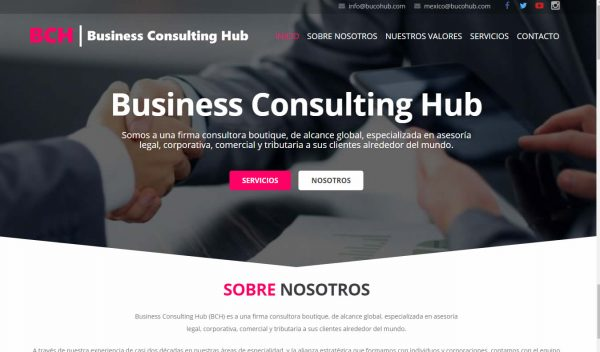 BCH Business Consulting Hub